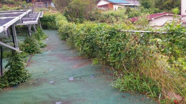除草を怠り破壊された太陽光発電設備